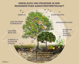 Agroforstwirtschaft